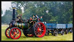 Steam Engine Stradbally 2019 (kckelleher11) Tags: 2019 40150mm ireland olympus rally august em1 f28 laois mzuiko omd steam stradbally