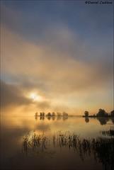 Ottawa Fogrise (Daniel Cadieux) Tags: sunrise morning earlymorning fog foggy mist misty ottawa ottawariver petrieisland
