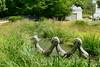 Les mains jointes (Mhln) Tags: caillebotte propriété maison gustave yerres yvelines france art peinture impressionnisme impressionniste gustavecaillebotte