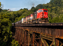 Canadian Style (Wheelnrail) Tags: cn canadian national ns norfolk southern emd sd75i locomotive ge c408m 64h ethanol bridge trestle steel ludlow kentucky cnotp cincinnati area summer