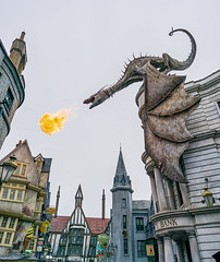 _DSC5012 (Shane Woodall) Tags: 2019 24mm ella florida harrypotter ilce9 lily orlando shanewoodallphotography sonya9 twins universalstudios vacation