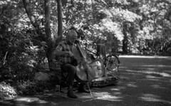 Playing (bingley0522) Tags: leicaiiic zeissjenasonnar50mmf15ltm trix hc110h epsonv500scanner lithiapark ashlandoregon cellist cello playing saturdaymorning peaceful autaut