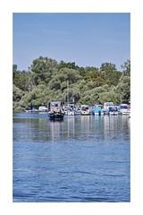 Port de plaisance d'Offendorf (Pierre_Bn) Tags: rhin rhein basrhin fleuve eau alsace elsass offendorf sigma sigmaprophoto sigmasdquattro sigma100400