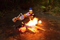 A midsummer night's dream... #LegoScenes #CenasLego #lego #legography #legomacro #macro #minifigures #minifigs #disney #disneyminifigures #canon #daisyduck #donaldduck #duck #nature #night #fire #fireplace (LegoScenes) Tags: legoscenes cenaslego lego legography legomacro macro minifigures minifigs disney disneyminifigures canon daisyduck donaldduck duck nature night fire fireplace