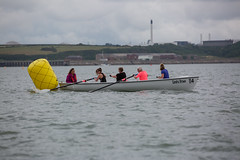 20190804_75150 (axle_b) Tags: rowing regatta celtic longboat oars race racing river cleddau milford haven pembrokeshire pembrokeshireyachtclub pyc