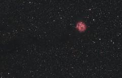 The Cocoon Nebula (AstroBackyard) Tags: astrophotography astronomy space telescope camera deep sky night stars cocoon nebula cygnus zwo asi skywatcher idas filter ngs1