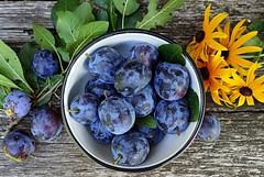plums (majka44) Tags: stilllife plum food vitamins colors macro 2019 garden mygarden leaves green flower yellow blue