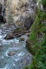 A7307652_s (AndiP66) Tags: felsenschlucht rockygorge schlucht canyon gorge breitach fluss river waterflows allgäu bavarianalps oberstdorf kleinwalsertal mittelberg vorarlberg austria österreich sony sonyalpha 7markiii 7iii 7m3 a7iii alpha ilce7m3 sonyfe24105mmf4goss sony24105mm 24105mm emount sel24105g andreaspeters