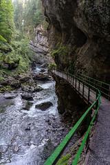 A7307625_s (AndiP66) Tags: felsenschlucht rockygorge schlucht canyon gorge breitach fluss river waterflows allgäu bavarianalps oberstdorf kleinwalsertal mittelberg vorarlberg austria österreich sony sonyalpha 7markiii 7iii 7m3 a7iii alpha ilce7m3 sonyfe24105mmf4goss sony24105mm 24105mm emount sel24105g andreaspeters