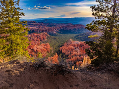 on the edge of the trail ... (mariola aga) Tags: brycecanyonnationalpark utah canyon sunrise trails landscape pixel2xl phonephotography
