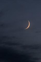 Low Crescent Moon (Tim Aldworth) Tags: astrophotography moon crescent eos7d lens ef70300mmf456lis luna lunar crescentmoon nightsky theskyatnight evening eveningsky astro hantsastro indigo