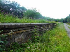 Platform at Millers Dale Station, Monsal Trail.  (Former Derby - Manchester line)   August 2019 (dave_attrill) Tags: platform edging overgrown millersdale station monsaltrail disused railway line trackbed footpath bridleway cyclepath derbyshire peakdistrict nationalpark wyevalley buxton derbytomanchester midland august 2019 closed1968