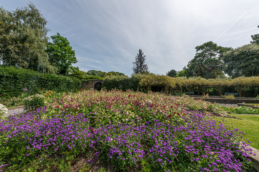 THE CLOCKTOWER GARDENS [ST. ANNE'S PARK IN RAHENY]-154804