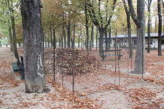 A place for collecting fallen leaves in the Jardin du Luxembourg (janeymoffat) Tags: leaves fall fallfoliage fallcolors fence details paris france garden park luxembourggardens jardinduluxembourg