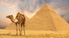 Khám phá vùng đất bí ẩn Ai Cập cổ đại (quynhchi19102016) Tags: ve may bay gia re di ai cap
