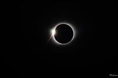 DSC_0244 (meghanavdeshpande) Tags: tse2019 tsechile totalsolareclipse chile eclipse laserena sunseteclipse nikon dslr