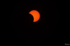DSC_0185 (meghanavdeshpande) Tags: tse2019 tsechile totalsolareclipse chile eclipse laserena sunseteclipse nikon dslr