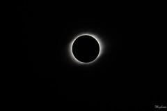 DSC_0228 (meghanavdeshpande) Tags: tse2019 tsechile totalsolareclipse chile eclipse laserena sunseteclipse nikon dslr