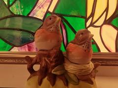 HMM #MacroMondays (Mr. Happy Face - Peace :)) Tags: macromondays theme birds art2019