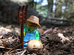 Shrooming again (captain_j03) Tags: toy spielzeug 365toyproject lego series15 minifigure minifig farmer pilz mushroom fungi bokeh