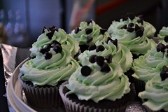 Vegan Bake Sale (Vegan Butterfly) Tags: vegan bake sale animal rights veganism food event edmonton alberta earths general store green cupcakes chocolate mint dessert yummy tasty delicious