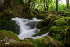 waterfall (a.l.bsk) Tags: river landscape forest travel travelphoto река каньон лес пейзаж