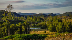 Landscape (prajpix) Tags: invernesshire highlands scotland woods woodland forest birchwoods plantation loch lochan pond lake water nature forestry hills mountains landscape manmade summer evening sunlight view tranquil peaceful trees bracken sky clouds