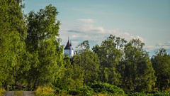 Tower (prajpix) Tags: tower house castle dwelling woods woodland road track path trees birch fairytale architecture roof invernesshire highlands scotland building fakecastle
