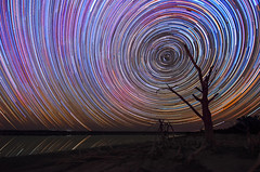 Yenyening Lakes Star Trails - Beverley, Western Australia (inefekt69) Tags: star trails yenyening lakes beverley lake cosmology southern hemisphere cosmos tracing startrailsexe circles tracks stacked stacking stack western australia dslr long exposure rural tokina 1116mm night photography nikon stars astronomy space galaxy astrophotography landscape d5100 dead tree reflections