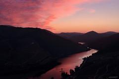 2019_07_06_013237 (paulosilva.pro) Tags: montanha nascerdosol paisagem riodouro socalcos vinhas
