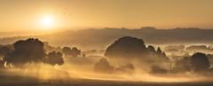 Silleda (Noel F.) Tags: sony a7r iii a7riii voigtlander 110 apo escuadro silleda galiza galicia neboa fog mist mencer sunrise