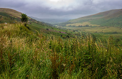 Brecon Beacons Panorama I (Aquagg) Tags: canoneos100d featherstonefotography brecon canonefs1018