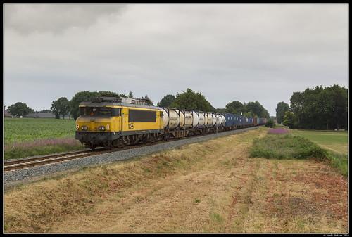 Bentheimer Eisenbahn E01, Beerzerveld