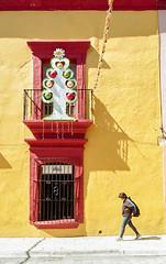 Paso navideño (Marcos Núñez Núñez) Tags: street color streetphotography streetphotographer composición film filmphotography national analógico 35mm rollo calle fotografíacallejera mx oaxaca oax