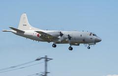 Lockheed P-3C Orion (Boushh_TFA) Tags: lockheed p3c p3 orion 51 5088 88 japan maritime selfdefense force naval air facility atsugi naf nja rjta united states navy kanagawa nikon d600 nikkor 300mm f28 vrii