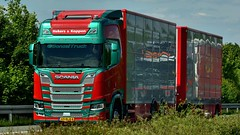 NL - Hekers & Koppen Scania NG R520 (BonsaiTruck) Tags: hekers koppen livestock scania lkw lastwagen lastzug truck trucks lorry lorries camion caminhoes