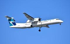 C-GENO DHC8 Q400 Westjet (corrydave) Tags: cgeno dhc8 q400 westjet boston dash8 4535