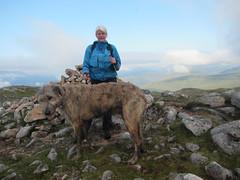 Marika's 50th Munro - Beinn Teallach (andywalker1) Tags: andrewwalker scotland karhu irishwolfhound wolfhound paddywhack