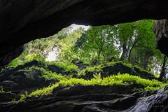 A7307800_s (AndiP66) Tags: felsenschlucht rockygorge schlucht canyon gorge breitach fluss river waterflows allgäu bavarianalps oberstdorf kleinwalsertal mittelberg vorarlberg austria österreich sony sonyalpha 7markiii 7iii 7m3 a7iii alpha ilce7m3 sonyfe24105mmf4goss sony24105mm 24105mm emount sel24105g andreaspeters