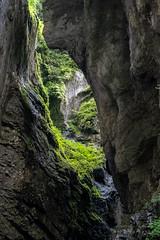 A7307701_s (AndiP66) Tags: felsenschlucht rockygorge schlucht canyon gorge breitach fluss river waterflows allgäu bavarianalps oberstdorf kleinwalsertal mittelberg vorarlberg austria österreich sony sonyalpha 7markiii 7iii 7m3 a7iii alpha ilce7m3 sonyfe24105mmf4goss sony24105mm 24105mm emount sel24105g andreaspeters