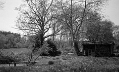 The shed (Rosenthal Photography) Tags: asa400 kleinbildformat ilfordlc2912920°c9min ff135 analog ilfordhp5 epsonv800 olympustrip35 schwarzweiss frühling ilfordrapidfixer 35mm sommer 20190601 shed mood pond summer june sun sunny shunshine landscape river meadow trees olympus olympus35 trip trip35 dzuiko zuiko 40mm f28 ilford lc29 129 14 rapid fixer epson v800