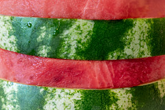 Watermelon! (amarilloladi) Tags: macro green red watermelon macromondays complementarycolours complementarycolors fruit summer