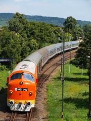 M61 019 (TWRC93) Tags: m61 019 nohab balaton badacsonytomaj retro hétvége weekend mávstart mávnosztalgia railways vasút diesel locomotive mozdony tekergő