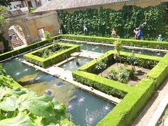 Alhambra (Kaeko) Tags: trip travel vacation holiday spain europe andalucia granada palace alhambra moorish people flower tree garden