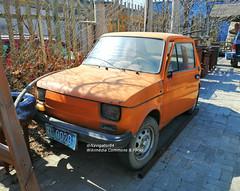 Polski-Fiat 126P 01 China 2019-03-23 (NavDam84) Tags: fiat 126p polskifiat polskifiat126p hatchback import carsinbaotou carsinchina vehiclesinbaotou vehiclesinchina