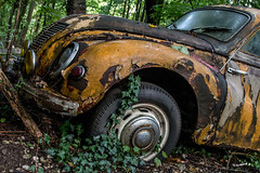Lost Place - Autoskulpturenpark (wb.fotografie) Tags: auto nature car lost tin fire rust place natur rusty eerie oldtimer rost scrap feuerwehr sculptures blech brigade schrott transient skulpturen rostiges schaurig vergängliches autoskulpturenpark autoskulpturen lostplace
