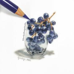 Black Grapes 🍇 (JocelynDesignStudio) Tags: food fruit grapes pencildrawing coloredpencil art drawing
