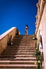 18072019-IMG_5428.jpg (KitoNico) Tags: italie pouilles italia trani italy colors wedding mariage sky escaliers stairs flowers fleurs