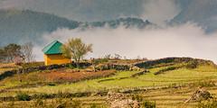 _J5K6628.1.0212.Choẻn Thèn.Y Tí.Bát Xát.Lào Cai. (hoanglongphoto) Tags: asia asian vietnam northvietnam northeastvietnam landscape scenery vietnamlandscape vietnamscenery vietnamscene cloud clouds house home tree one 1 canon canoneos1dsmarkiii đôngbắc flanksmountain làocai ytí phongcảnh sườnnúi mây ngôinhà hàngcây sunlight sunny nắng sunnymorning nắngsớm northernvietnam morningsunshine phongcảnhytí mâyytí