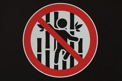 No Sleeping on Raft (Bracus Triticum) Tags: stickfigure no sleeping raft calgary カルガリー アルバータ州 alberta canada カナダ 7月 七月 文月 shichigatsu fumizuki bookmonth 2019 reiwa summer july